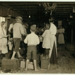 Shrimp pickers